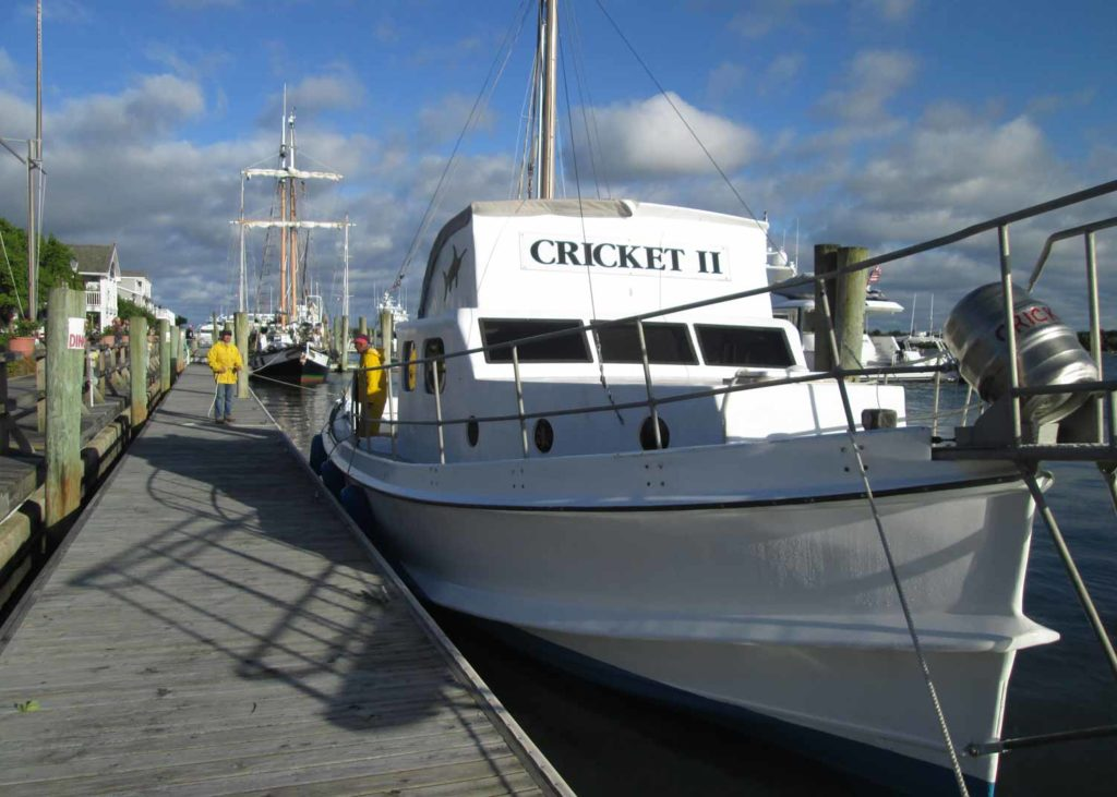 Cricket II Inspiration Move Jaws Annual Wooden Boat Show