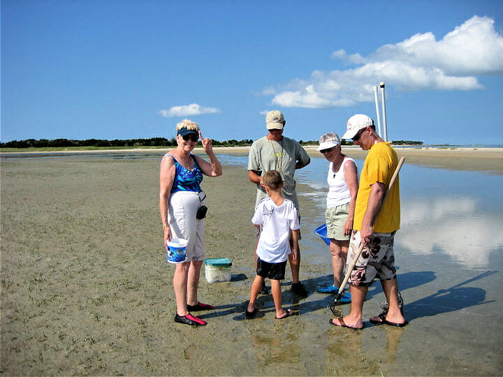 group of people on a beach looking for clams