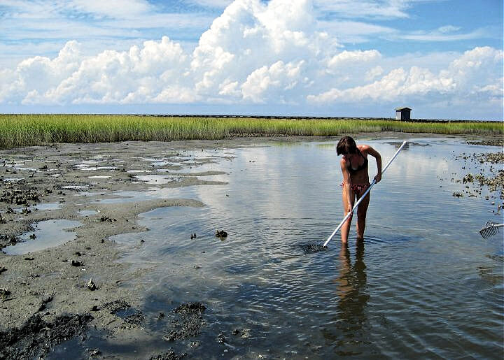 Person with long pole crabbing